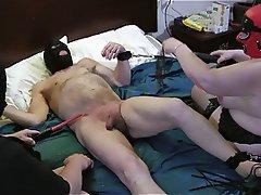 Amateur, BBW, BDSM, Femdom