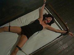 BDSM, Bondage, Brunette, Fucking