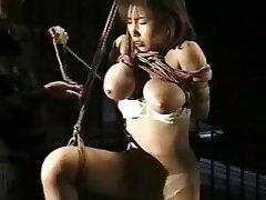 BDSM, Büyük göğüsler, Kölelik, Japonya